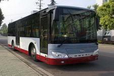 安凯牌HFF6105G39C客车图片