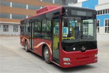 龙江牌LJK6106SHN5型城市客车