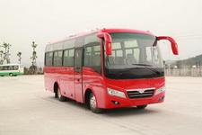 8米|24-35座川马客车(CAT6800C4E)