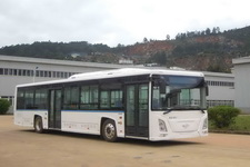 12米|10-36座长江纯电动城市客车(FDE6120PDABEV02)