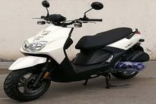 天鹰牌TY150T-7型两轮摩托车图片