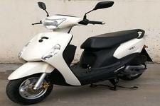 天鹰牌TY110T-3型两轮摩托车图片