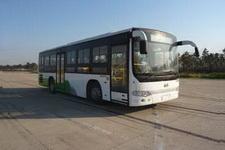 安凯牌HFF6101G39DE5客车图片