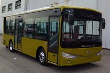 安凯牌HFF6850G03DE5客车图片
