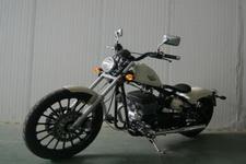 大地鹰王牌DD400E-2型两轮摩托车图片