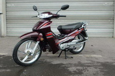 赛阳牌SY110-A型两轮摩托车图片
