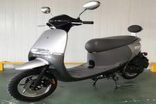 望龙牌WL100T-9型两轮摩托车