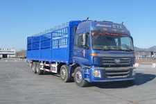福田欧曼国四前四后八仓栅式运输车269-310马力15-20吨(BJ5313CCY-XC)