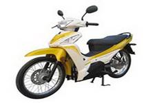 建设牌JS2000D型电动两轮摩托车图片