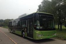 12米|28-42座金马纯电动城市客车(TJK6124BEV)
