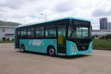 长江牌FDC6850PBABEV01型纯电动城市客车