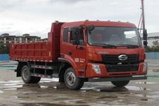 时骏牌LFJ3044SCG2型自卸汽车图片