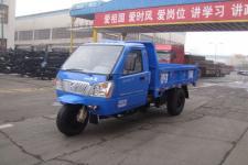 时风牌7YPJ-1750D5型自卸三轮汽车图片