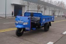时风牌7Y-1450D42型自卸三轮汽车图片