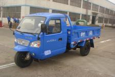 时风牌7YPJ-1450D9型自卸三轮汽车图片