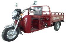 大运牌DY110ZH-10型正三轮摩托车图片