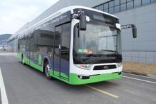 12米|10-35座南车纯电动城市客车(CSR6120GSEV1)
