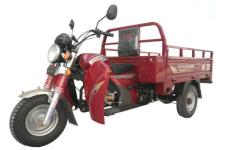 大运牌DY200ZH-2A型正三轮摩托车图片