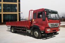斯达-斯太尔牌ZZ1161H521GD1型载货汽车图片