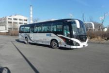 10.5米|24-53座黄海纯电动客车(DD6110KEV1)