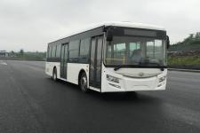 紫象牌HQK6128N5GJ型城市客车