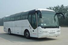 青年牌JNP6105V1型豪华客车图片