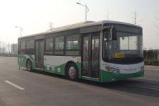 10.5米|10-36座向阳纯电动城市客车(SQ6105BEVB2)