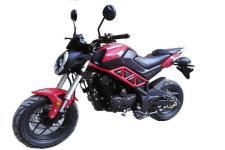 天地游侠牌TD150-23型两轮摩托车