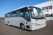 黄海牌DD6857C10型客车图片