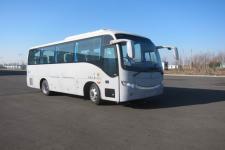 黄海牌DD6807C10型客车图片