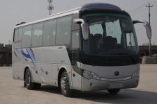 8.6米宇通ZK6858H5Y1客车图片