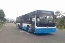 10.5米|24-36座中国中车纯电动城市客车(TEG6106BEV04)