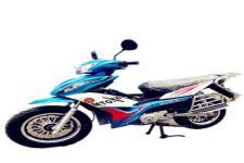 鹏城牌PC110-9型两轮摩托车图片