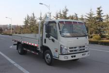 福田越野载货汽车(BJ2046Y7JDA-AA)