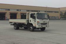 大运牌CGC2043HDE33E型越野载货汽车图片