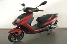 雅迪牌YD1000DT-2B型电动两轮摩托车图片
