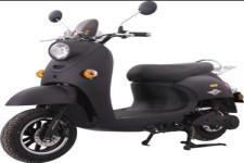 爱玛牌AM1200DT-8型电动两轮摩托车图片