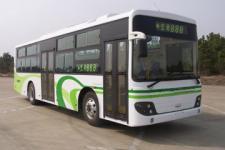 10.5米|24-46座象城市客车(SXC6105G5)