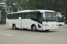 11米|24-51座福田客车(BJ6113U8MCB)