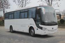 宇通牌ZK6998HN1Y型客车图片