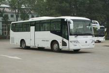 福田牌BJ6112C8MCB型城市客车图片