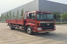 福田牌BJ1169VKPEK-A2型载货汽车图片