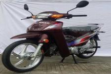 WY110C型王野牌两轮摩托车图片