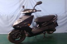 WY125T-8C型王野牌两轮摩托车图片