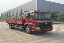 福田牌BJ1169VKPEK-A4型载货汽车图片