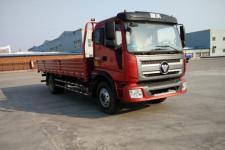 福田牌BJ1165VKPHK-FA型载货汽车图片
