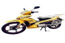 鹏城牌PC110-8型两轮摩托车图片