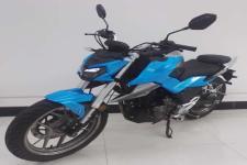 飞肯(FEKON)牌FK175型两轮摩托车