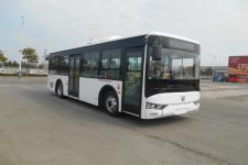 亚星牌JS6906GHBEV1型纯电动城市客车图片