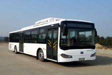江西牌JXK6126BPHEVN型插电式混合动力城市客车图片
